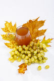 Grapes and wine Stock Image