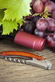 Grapes and wine bottle Stock Image