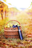 Grapes and wine bottle Stock Photography