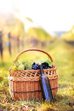 Grapes and wine bottle Stock Photos