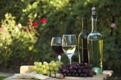 Grapes, Wine, Cheese & Crackers. Red and White grapes and wines, with cheese and crackers for a picnic in the rose garden Royalty Free Stock Photos