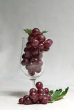 Grapes in wine glass Royalty Free Stock Photos