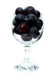 Grapes in the wine glass. Black grapes in the wine glass on the white background Royalty Free Stock Image