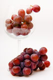 Grapes in a wine glass Stock Photography