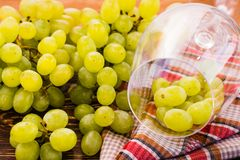 The grapes in the wine glass and bunch of grapes. On the table stock image