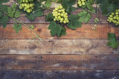 Grapes on wood Royalty Free Stock Photos