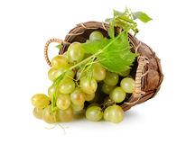 Grapes in a wooden basket. On white background royalty free stock images