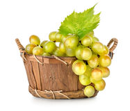 Grapes in a wooden basket isolated Royalty Free Stock Photo