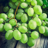 Grapes on wooden rustic table Royalty Free Stock Images