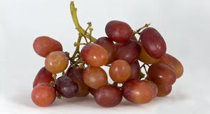 grapes1 κόκκινο στοκ εικόνες με δικαίωμα ελεύθερης χρήσης
