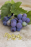 Grapeseed Royalty Free Stock Photos