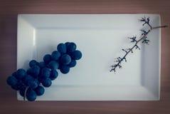 grapevine Стоковое Изображение