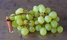 grapevine Foto de Stock Royalty Free