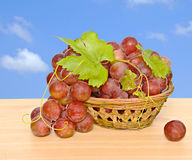 Grapevine in basket on table Stock Images