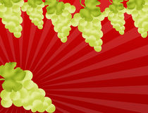 Grapevine border Stock Photo