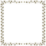 Grapevine frame Royalty Free Stock Photo