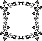 Grapevine frame Royalty Free Stock Photography