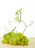Grapevine, green grapes and glass of wine Royalty Free Stock Image