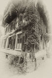 Grapevine house in sepia. Sepia image of a house covered with grapevine royalty free stock image