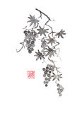 Grapevine Japanese style original sumi-e ink painting. Royalty Free Stock Photos