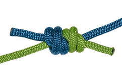 Grapevine knot, blue and green rope. Royalty Free Stock Image