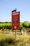 The grapevine of Varois in Provence with tourist information billboard Royalty Free Stock Image