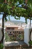 Grapevine and white town, Cabra. Stock Photo