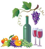 Grapevine, wine and fruits royalty free illustration