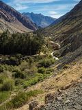 Grapeyard, Wijngaard Elquivallei, het deel van de Andes van Atacama-Woestijn royalty-vrije stock afbeeldingen