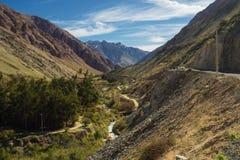 Grapeyard, Wijngaard Elquivallei, het deel van de Andes van Atacama-Woestijn royalty-vrije stock foto's
