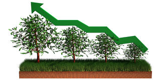 Graph Agriculture Stock Photo