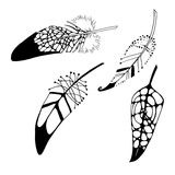 Graphic abstract Illustration of feather Stock Photos
