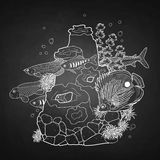 Graphic aquarium fish with coral reef. Drawn in line art style. Underwater scenery  on the chalkboard Stock Photos