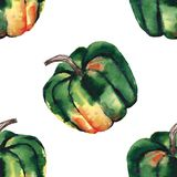 Graphic artistic abstract bright cute autumn ripe tasty colorful halloween green pumpkins pattern watercolor hand illustration. Perfect for textile, wallpapers royalty free illustration