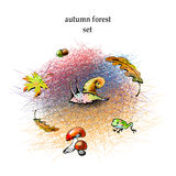 Graphic autumn forest set. The vector picture. EPS 10. Mesh Stock Photo