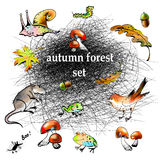 Graphic autumn forest vector set. The vector picture. Mesh autumn forest vector set Stock Photo