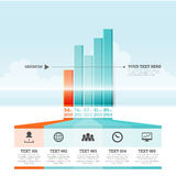 Graphic Bar Infographic Elements vector illustration