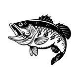 Graphic bass fish, vector. Graphic bass fish black on white background, EPS 10 Royalty Free Stock Images