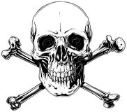 Graphic detailed human skull with crossed bones Royalty Free Stock Photo