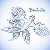 Graphic blue sea slug. Glaucus atlanticus. Blue sea slug drawn in line art style. Blue dragon. Sea angel. Vector ocean creature in blue colors Stock Photos