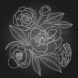 Graphic camellia set Stock Photography