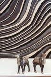 Graphic carpet texture Stock Photography