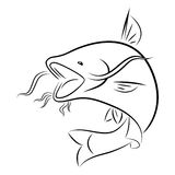 Graphic catfish, vector Royalty Free Stock Photography