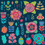 Graphic collection with leaves, herbs, bugs, butterflies and flowers, drawing elements. Stock Photography
