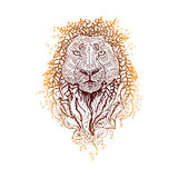 Graphic colored vector lion. Royalty Free Stock Images