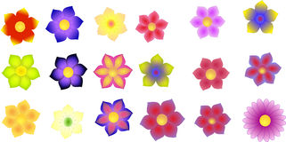 Graphic of colorful flowers isolated. Illustration of colorful lavender, carnations, forget-me-nots and gerbera flowers isolated on a white background Royalty Free Stock Photo