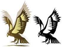 Graphic condor illustration Stock Photography