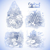 Graphic coral reef collection. Coral reef design collection in line art style. Sea and ocean plants and rocks  on white. Coloring page design Stock Images