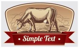 Graphic cow Stock Image