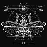 Graphic decorative image of the Mantis. Sacred geometry. Esoteric, Mysticism, Sorcery. Stock Images